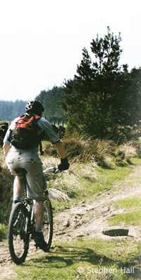 mountain bike routes photo 4